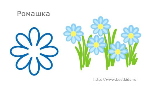 Делаем красивые цветы в